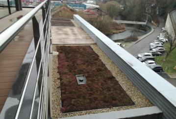 Rox Immo s.a. à Verviers – Pose d'une toiture végétale extensive – 200 m²